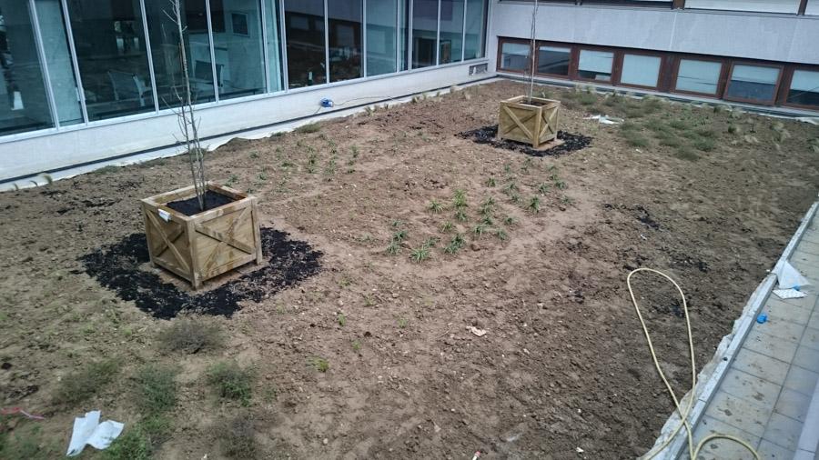 les-jardins-dines-jardin-toit-2