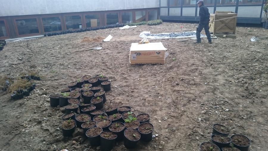 les-jardins-dines-jardin-toit-3