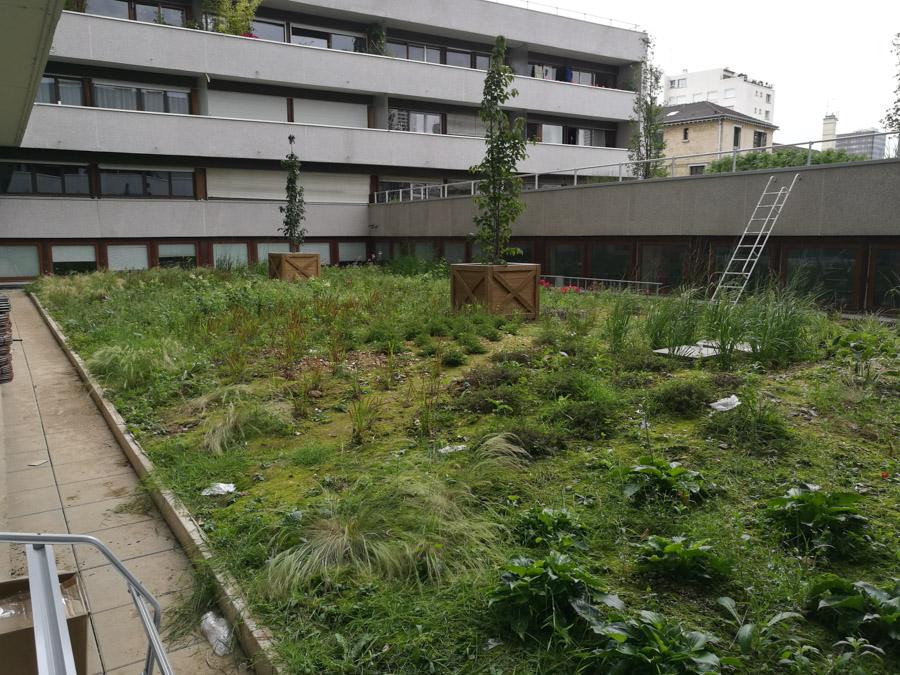 les-jardins-dines-jardin-toit-4